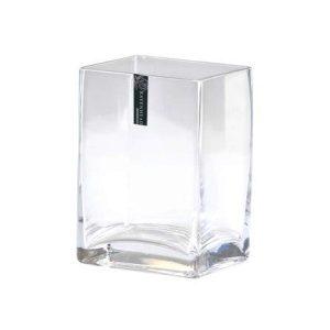 Glass Tank Vase