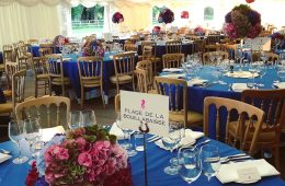 Family reunion party with bright Royal Blue table linen and Reserva glassware