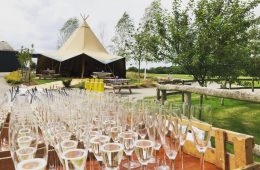 Tipi wedding at Winkworth Farm with Reserva champagne flutes